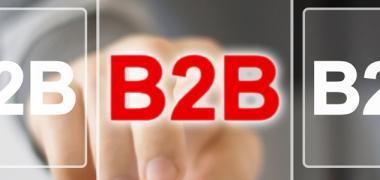 SectorBRAND B2B