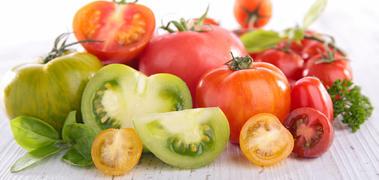 Rolnictwo i Przetwórstwo